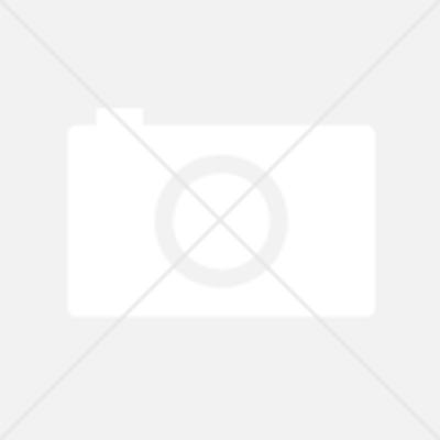 Filtr wstępny do oczyszczacza Coway Airmega 300S