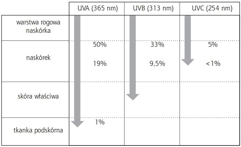 Oczyszczacz powietrza z lampą UV - przenikanie promieniowania UV