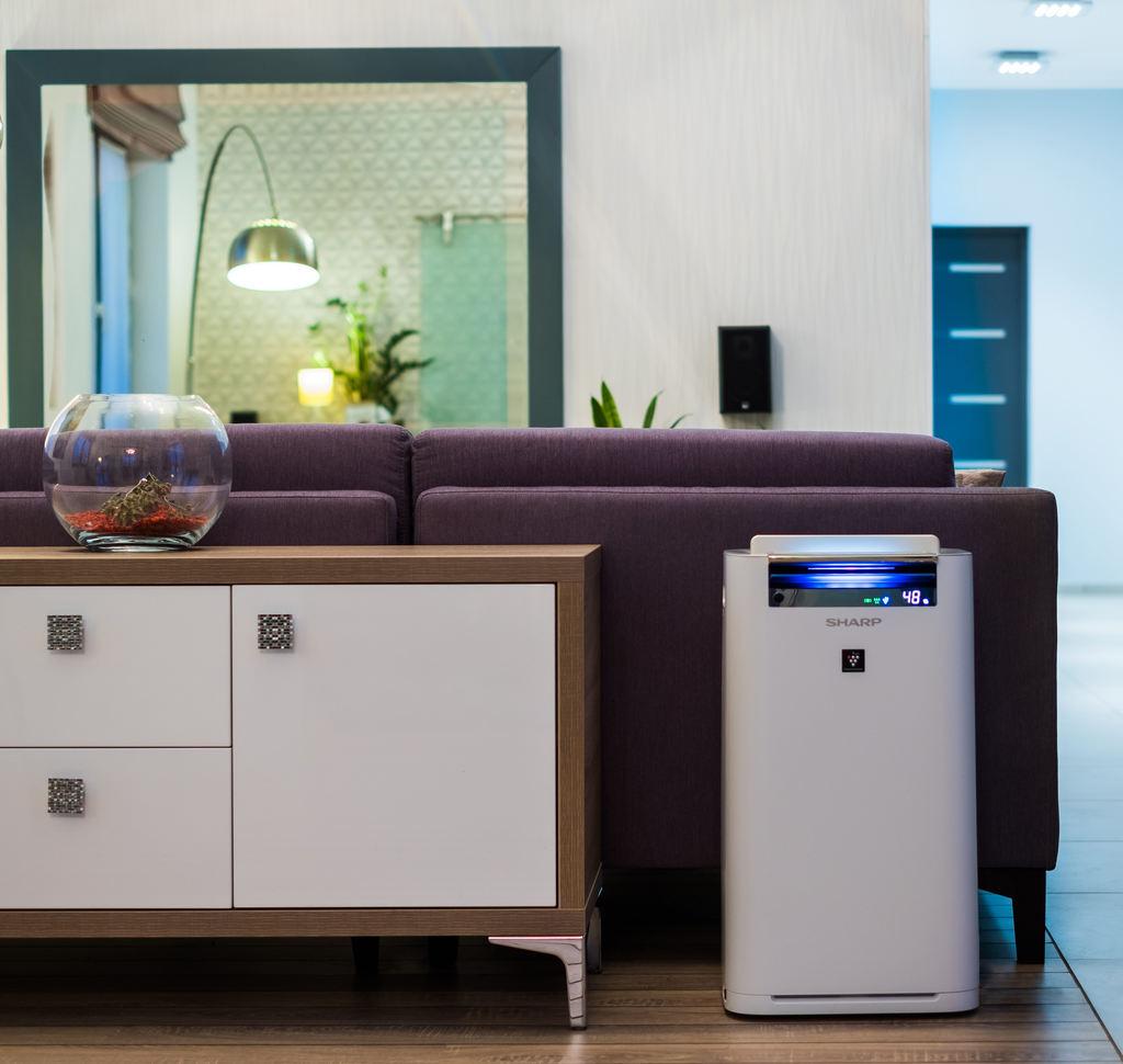 Oczyszczacz powietrza do domu - jakość powietrza w naszych domach